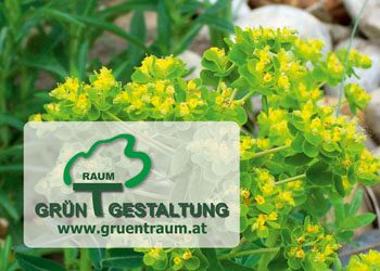 Gruentraum Visit (002)